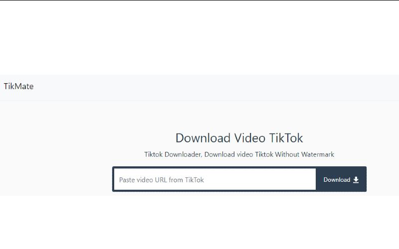 download video tiktok - tikmate