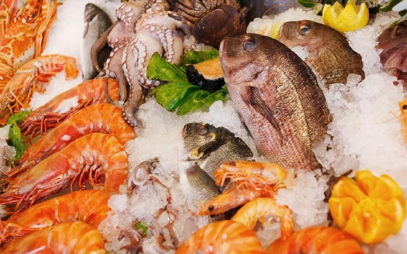 makanan tinggi protein - makanan laut