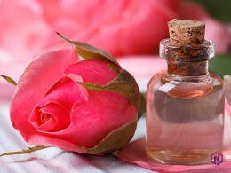manfaat air mawar